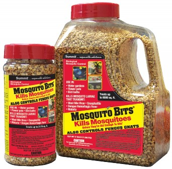 Mosquito bitsWEB